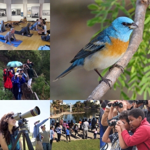 Beverly Hills Guided Hike / Intro to Birding in Franklin Canyon @ Franklin Canyon Park