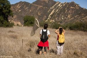 Bird bingo walk at UCLA @ Mildred E. Mathias Botanical Garden