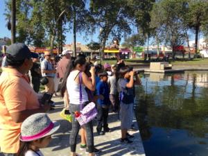 MacArthur Park - Bird Walk @ MacArthur Park