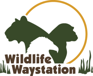 Bird LA Day - Wildlife Waystation @ Wildlife Waystation